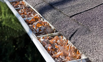 gutter cleaning Rochester